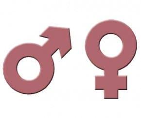 Identifizieren des Geschlechts von muscadines
