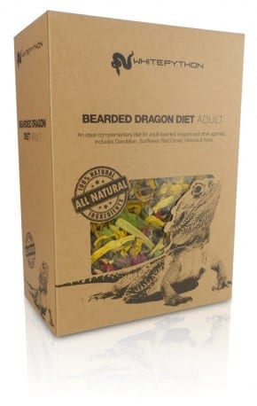 Adult Bearded Dragon Food