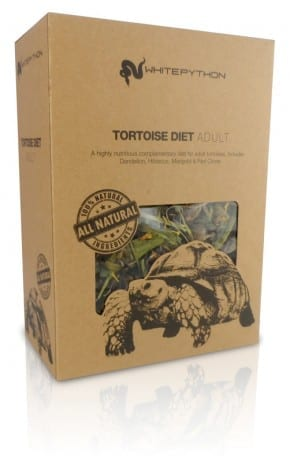 Adult Tortoise Food
